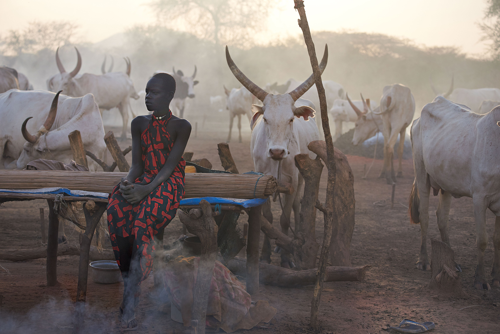 People | Mundari tribe cattle camp, South Sudan